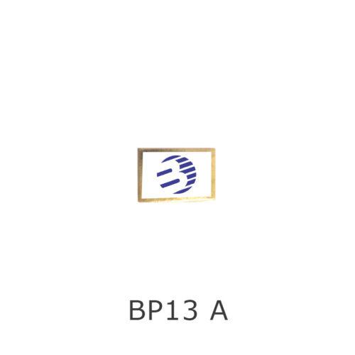 BP13A