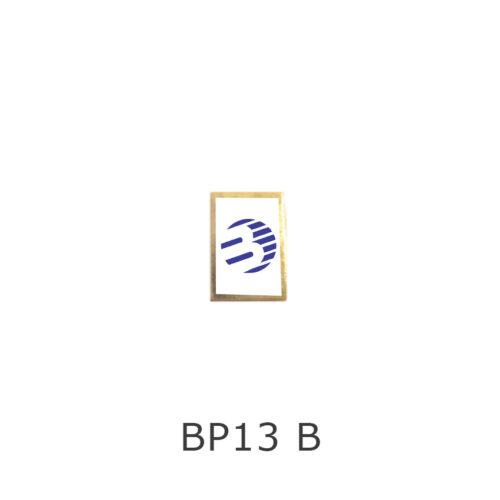BP13B