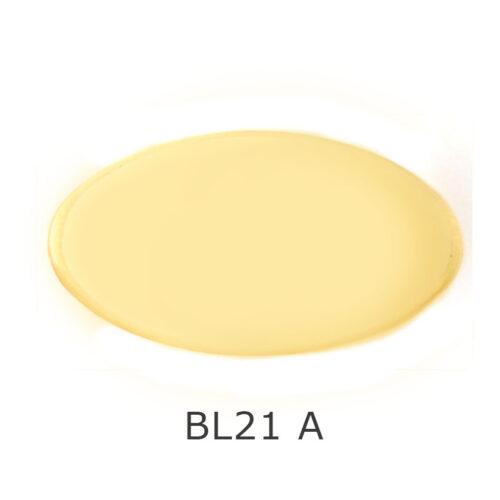 BL21A
