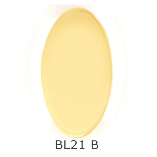 BL21B